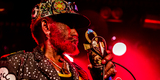Small lee perry mad professor foticoon 6