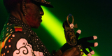 Small lee perry mad professor foticoon 32